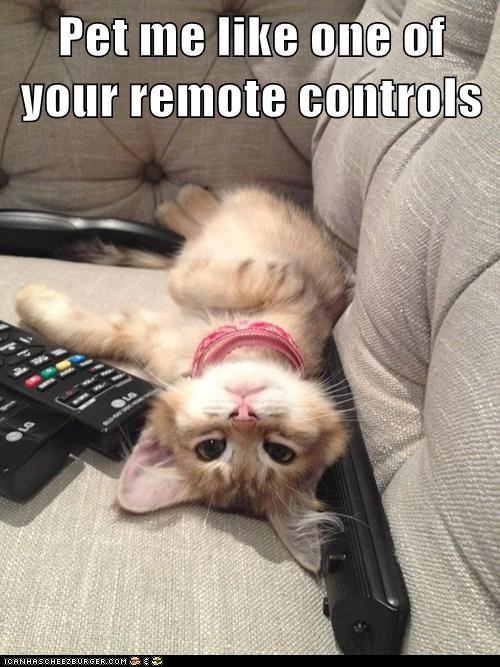 meme_remote